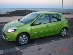 Clio verde bamboo di Ela